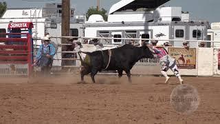 Bull Riding 59  | 104th Sonoita Labor Day Rodeo 2019