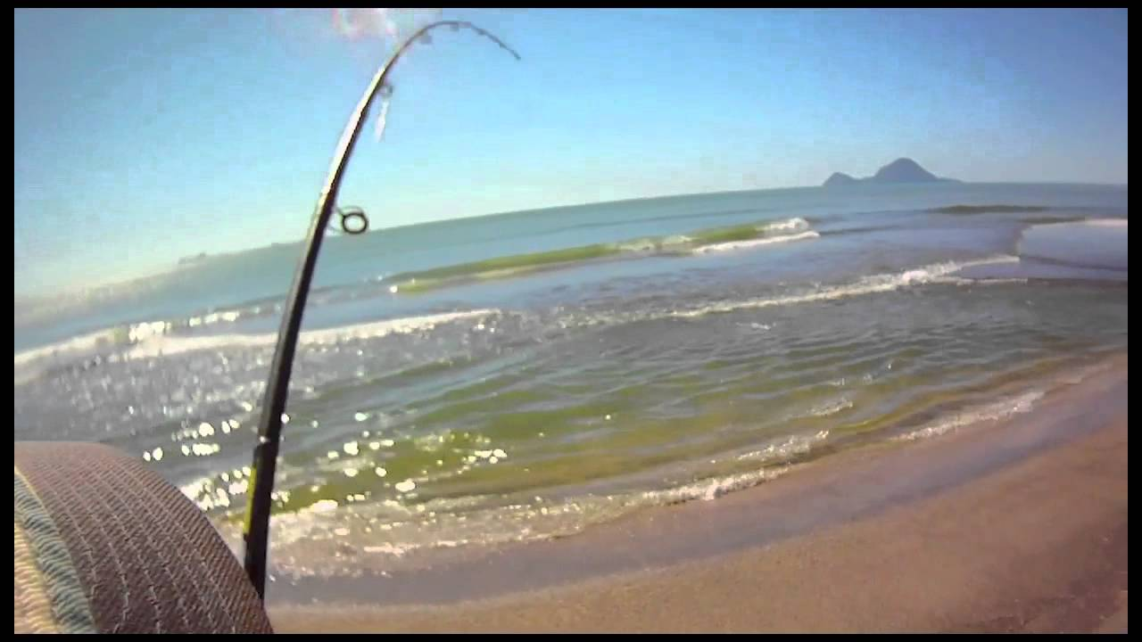Fishing for Kahawai Thornton NZ