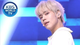 ENOi - bloom [Music Bank / 2019.05.17]