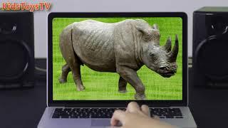 Дикие животные Африки ДЛЯ ДЕТЕЙ Слон, Бегемот, Жираф, Лев, Носорог, Горилла
