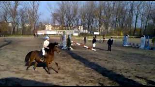 Hubertus 2011 w KKJK - potega skoków kuców
