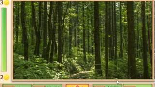 Ответы на игру ГДЕ ЖЕ КОТ в Одноклассниках на 21, 22, 23, 24, 25 уровень 2 главу (эпизод)