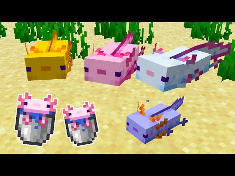 สัตว์ใหม่น้อง Axolotl สุดน่ารัก! (ซาลาแมนเดอร์เม็กซิกัน) - Minecraft Update 1.17 [Snapshot 20w51a]