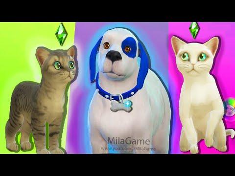 ТОМ 2 В The Sims 4 АНДЖЕЛА И КОТЯТА |  СДЕЛАЛИ ХЭНКА
