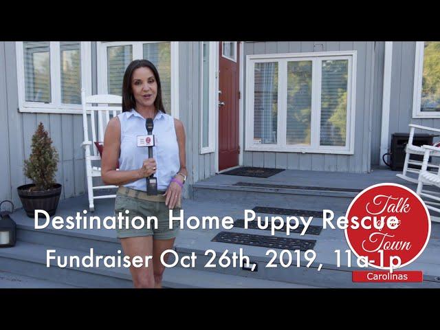 Destination Home Puppy Rescue Fundraiser