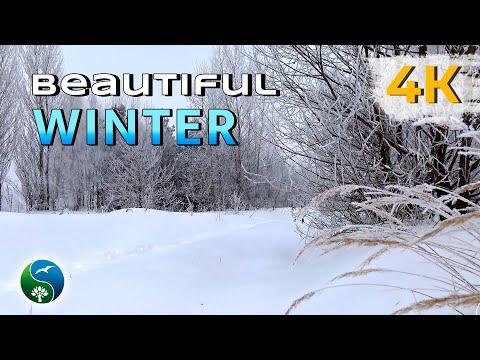 Волшебство зимних пейзажей, зима - красавица,  зимняя сказка, природа зимой, зимний день.