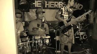 Sensi boy by HIRIE(the herbs band cover)