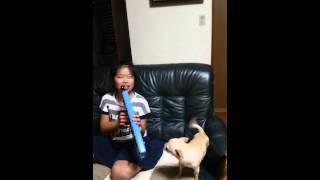 バニラは、ミッキーマウスマーチが大好きで、演奏に合わせて一生懸命歌...