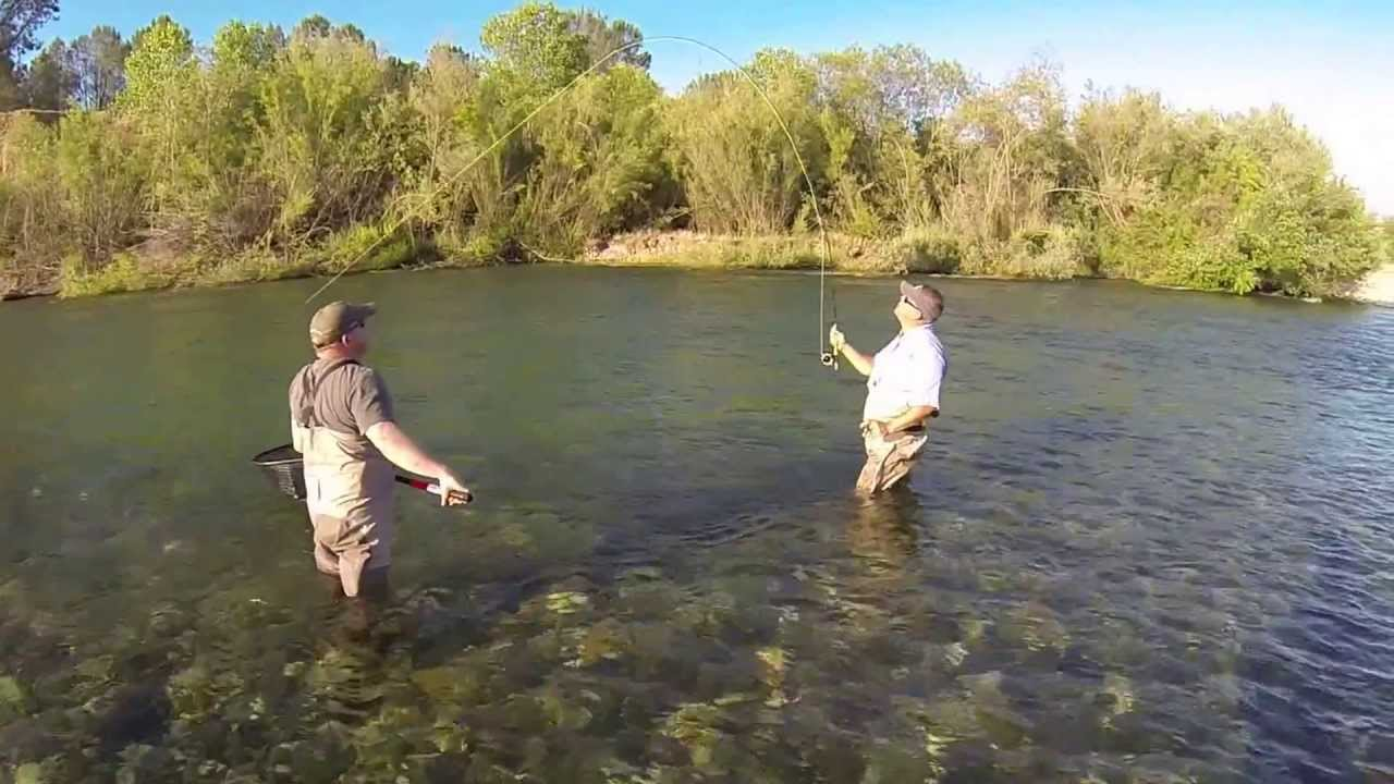 Fly fishing lower yuba river 5 26 13 with rafael and mike for Yuba river fishing report