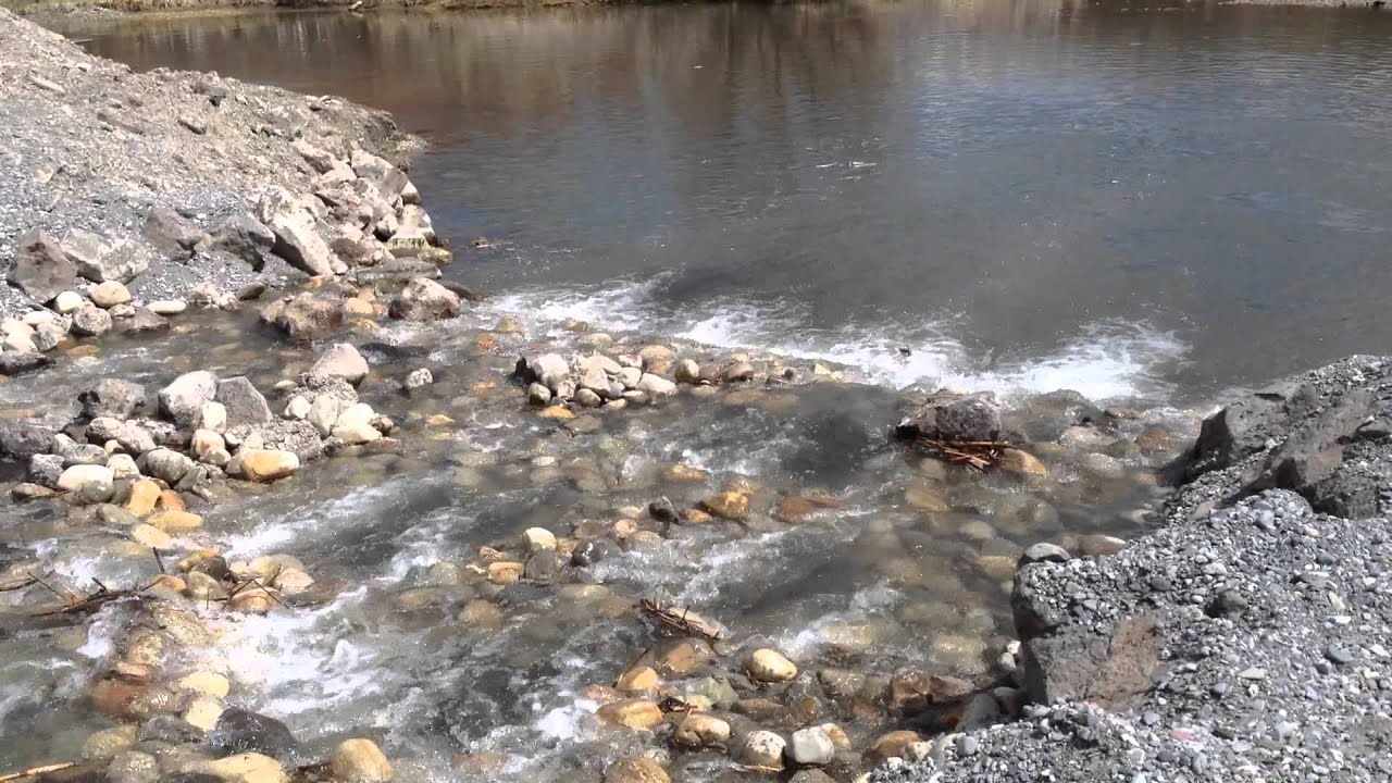 Silver creek kilpatrick pond fish ladder youtube for Silver creek fishing report