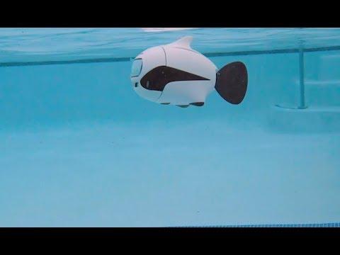 BIKI is a Bionic Underwater Fish Drone