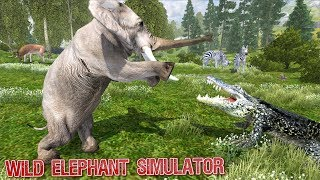 Wild Elephant Simulator Help To save Elephants By Yamtar Games Android