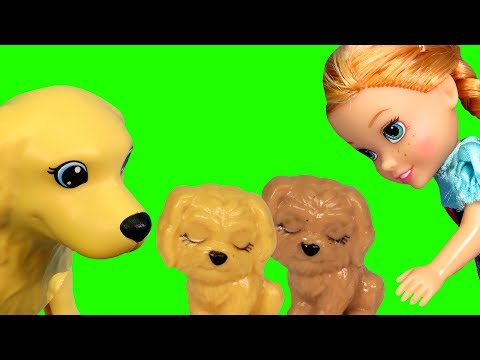 Puppies ! Elsa & Anna toddlers dog at the Pet VET - Sick ? Animal doctor clinic