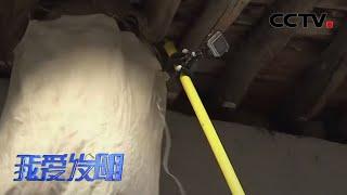 《我爱发明》 20200422 巧取蜂巢|CCTV农业