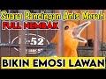 Suara Anis Merah Ampuh Memancing Lawan Agar Nyaut Gacor  Mp3 - Mp4 Download