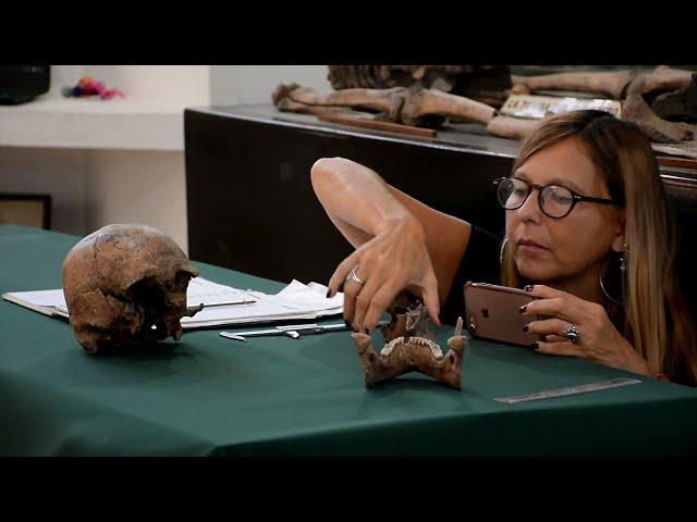Museo Municipal de Arqueología y Paleontología