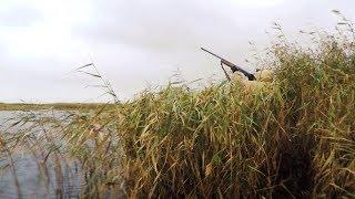 Ветер дует и утки летают Насадка для МР 153
