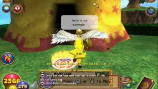 Wizard 101 - How To Train Your Pet!