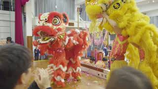 Publication Date: 2020-05-05 | Video Title: Hong Kong Chinese Women's
