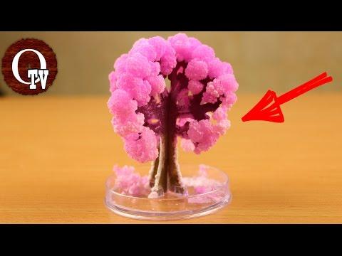 ВЫРАСТИЛ ИСКУССТВЕННОЕ ДЕРЕВО... Magic Sakura... OdinochkaTV