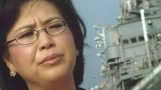 Vietnamese Pride - Nguyet Anh Duong (Vietnamese American )