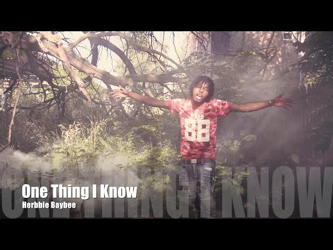 Herbbie Baybee - One Thing I Know (Music Video)