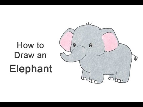How To Draw An Elephant Cartoon Youtube