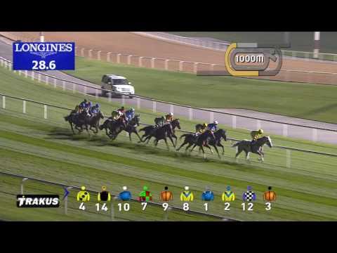 Race 2 Meydan Classic Trial