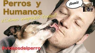 POR ESTO amamos nuestros perros
