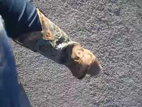 "The Virginia City Hill Climb in my ""Karyn Nevada"" Boots  Virginia City NV"