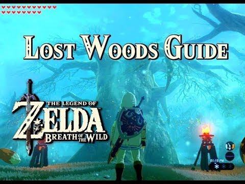 LOST WOODS GUIDE - Zelda: Breath of the Wild