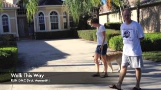 Stop Your Dog From Mouthing & Pulling On Leash
