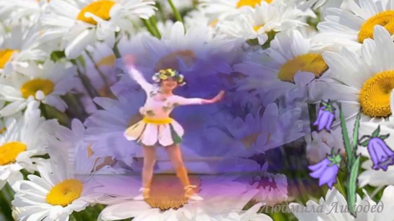 ❀❀❀Ромашка, ромашка цветок полевой!❀ Белый день❀