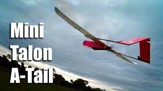 Mini Talon wing A Tail