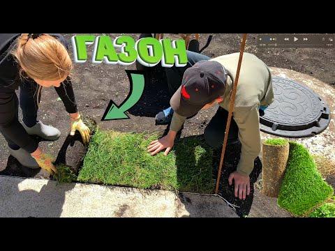 Как укладывать рулонный газон своими руками