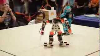 Robots en el Instituto Politécnico Nacional
