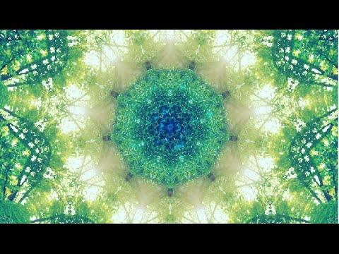 WaveDream ~ Healing Music (432hz) Meditation and Theta Isochronic Tones