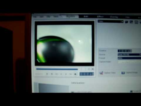 Honestech Tvr Setup For Easycap For Xbox 360 Funnydog Tv