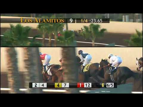 INTIMIDATE wins the King Glorious Stakes at Los Alamitos 12/16/17