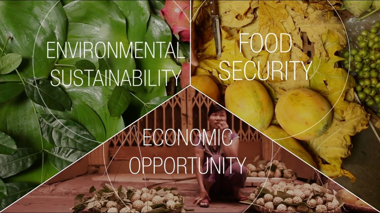 New Vision for Agriculture | World Economic Forum