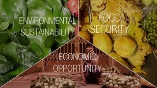 The New Vision for Agriculture