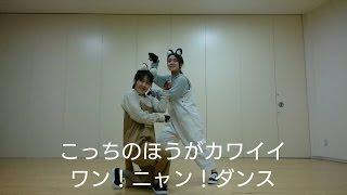 「天才!志村どうぶつ園」の相葉くんと伊野尾くんのユニットダンス「こ...