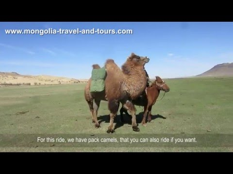 Gallop in Mongolia - Horse riding tours and equestrian holidays