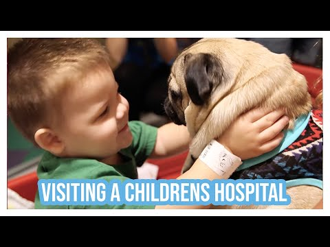 Doug The Pug Visits a Children's Hospital