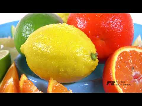 Just Drop It! Some Citrus into Your Diet Plan