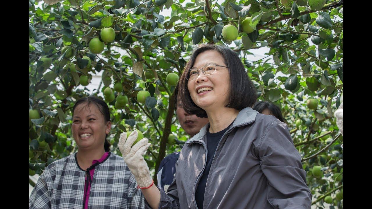 20190301 總統參訪「玉井果園」及「南化果園」 - YouTube