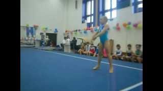 Sports gymnastics . Aleksenko Elena