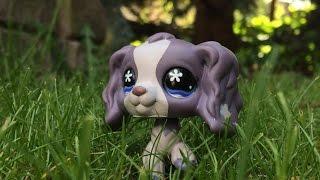 Littlest Pet Shop: Úkryt na louce (Film)