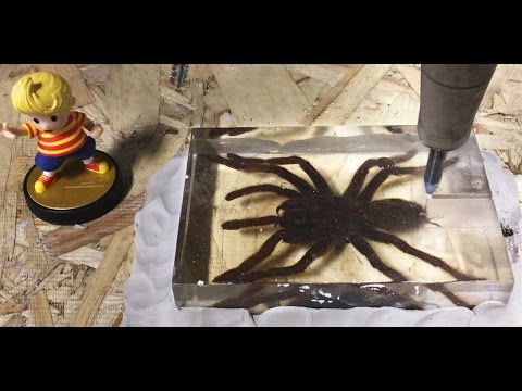 Dissecting A Tarantula With A 60,000 PSI Waterjet