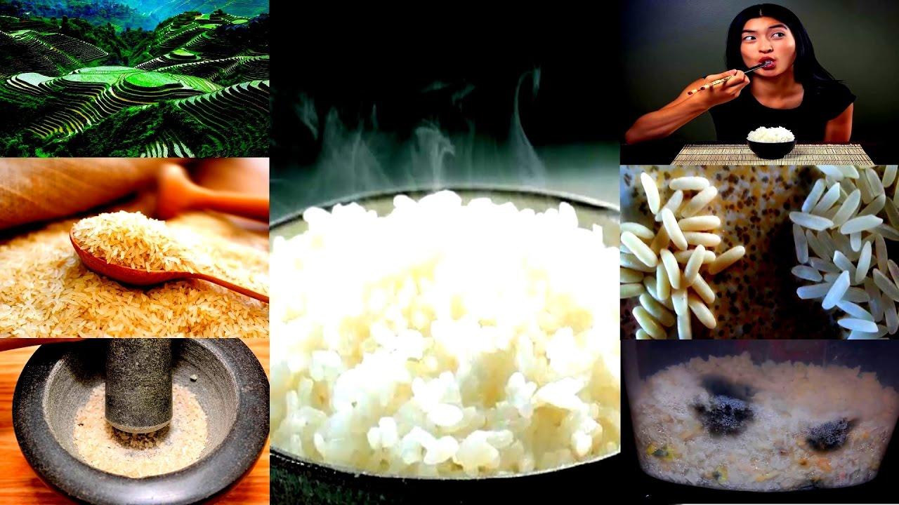 Рис «акватика» дикий, «мистраль», 500 г, россия с доставкой на дом заказать в интернет-магазине азбука вкуса. Продажа продуктов питания и.